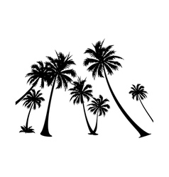 Icon palm tree silhuoette vector