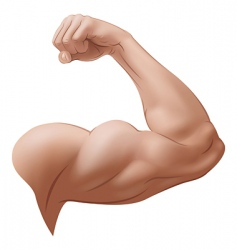 mans arm vector image