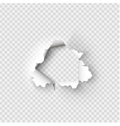 holes torn in paper on transparent vector image