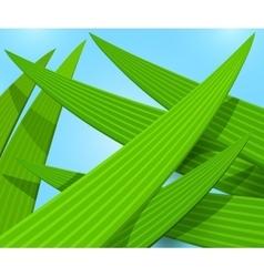 Green grass macro background vector