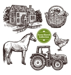 Farm hand drawn sketch set vector