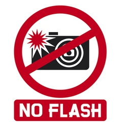 No flash sign vector