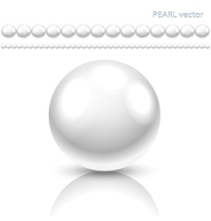 pearls set vector image