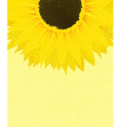 Decorative sunflower background vector