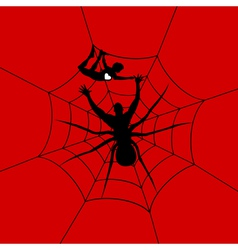 man as spider vector image