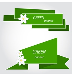 Set of green banners with flowers vector image
