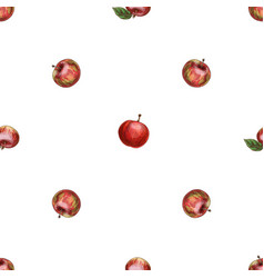 hand drawn red apple pattern vector image vector image