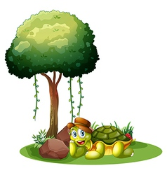 A smiling turtle near the rocks under the tree vector