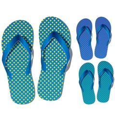 flip-flops vector image