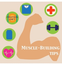 Muscle-building set vector