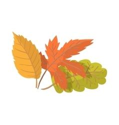Autumn leaves cartoon icon vector image