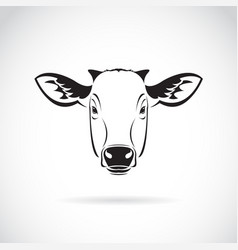 cow head on white background farm animal vector image