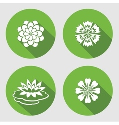 Flower icons set lily waterlily chamomile blue vector