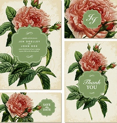 Vintage rose backgrounds vector