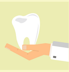 doctor hand holding human teeth healthcare vector image vector image