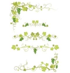 Vineyard design vector image