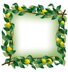 Lemon branch frame vector image