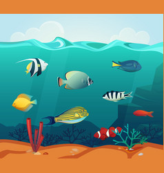 ocean colourful fishes with corals at bottom vector image vector image