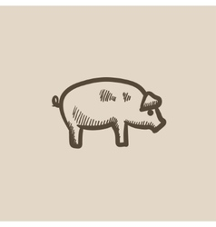 Pig sketch icon vector