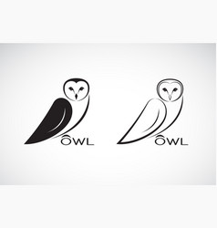 an owl design on white background bird wild vector image vector image