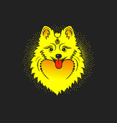 image of a yellow dog pomeranian dog head vector image