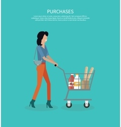 Woman with Cart Purchases Design vector image vector image
