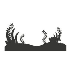 Kelp plant isolated icon vector