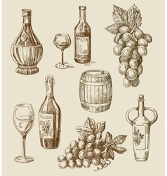 Winedoodle vector
