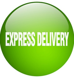 Express delivery green round gel isolated push vector