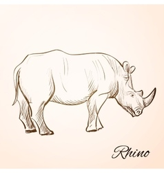 Doodle rhino vector