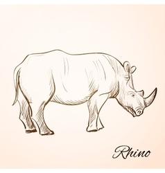 doodle rhino vector image
