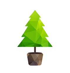 Triangle tree fir in pot vector