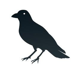 A crow symbol vector