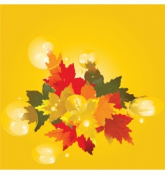 autumn drops vector image vector image