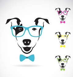 Dog bull terrier glasses vector