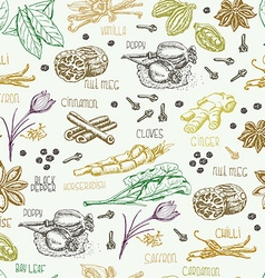 Seamless pattern with multi-colored spices vector