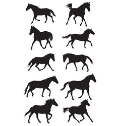 set of black trotting horses silouettes vector image
