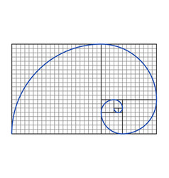 golden ratio symbol vector image