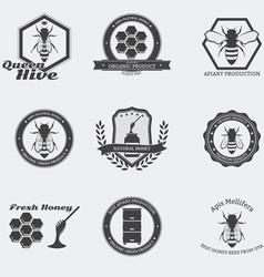 Bees emblems vector image