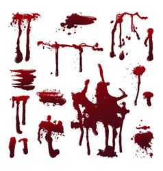 blood splashes vector image