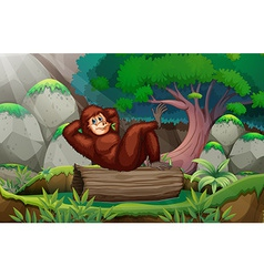 A gorilla at the forest vector image