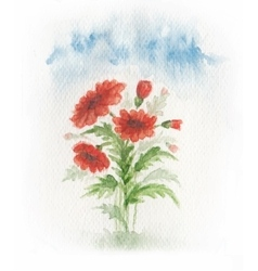 Red poppy on meadow vector