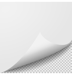 Curl corner paper template Transparent grid vector image vector image