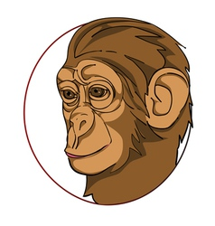 Monkey sign vector