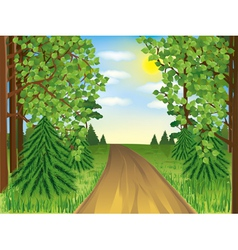 Realistic landscape spring or summer forest vector