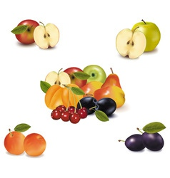 Big group with six fruit vector