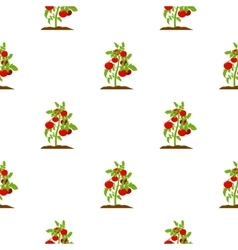 Tomato icon cartoon single plant icon from the vector