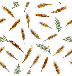 Cereals seamless pattern barley rye oats rice vector