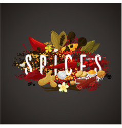 banner with spices seasonings and herbs for food vector image