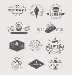 Design elements and badges vector image